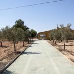 Casa campo en camino del Prado - Pinoso 17